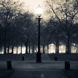 Light-in-a-Park