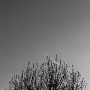 Line the sky