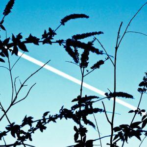 Limit: Sky
