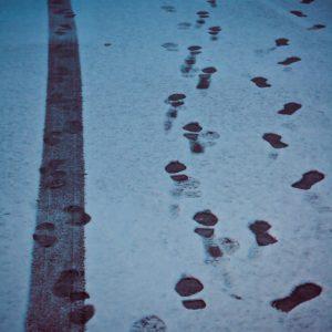 A line of steps