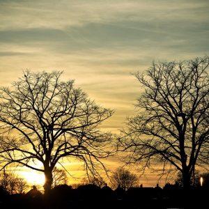 Wonderful-sunset